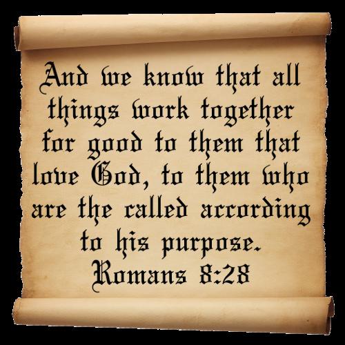 Romans-8-Verse-28p