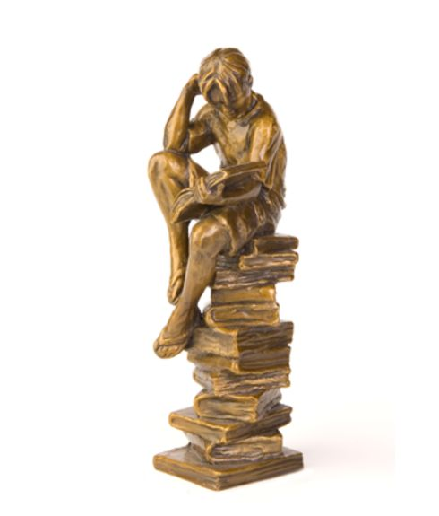 Doer - thinker - boy & books